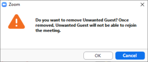 Screen grab of confirmation that you want to remove guest from meeting.